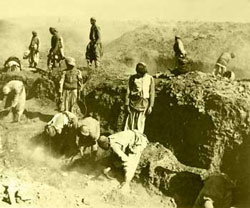 The Excavations at Oxyrhynchus c. 1898